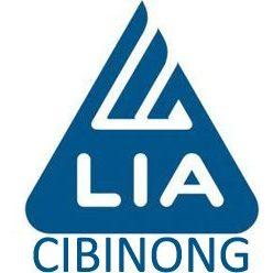 Lembaga Bahasa LIA Cibinong